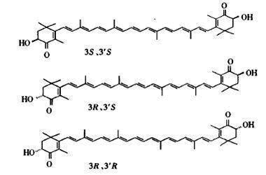 虾青素的分子结构